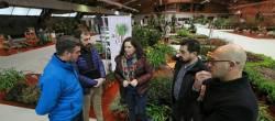 O sector da planta ornamental consolídase en Galicia cunha facturación anual de 398 millóns de euros