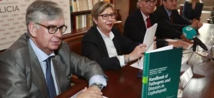 O prezo medio do polbo en lonxa bateu récords en 2018 e xerou ingresos por máis de 18 millóns de euros