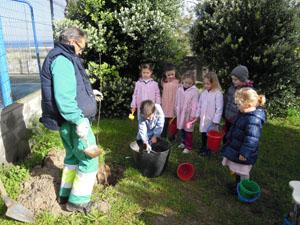 Plantación con escolares