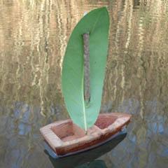 barca-pineiro-port