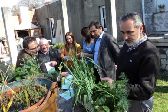 Cores Tourís na visita á horta ecolóxica de Covelo