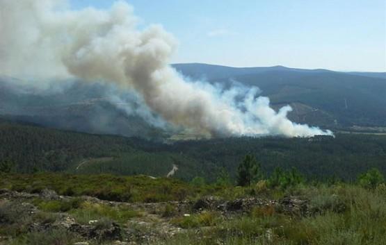 Incendio en Laza (Ourense)