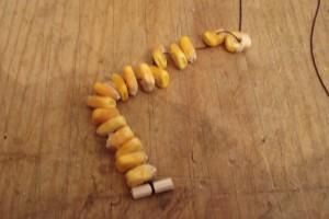 colar-millo-paso-1
