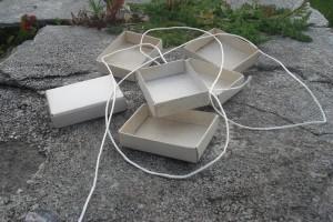 tren-caixas-mistos-paso-1