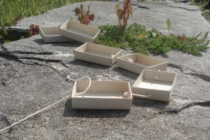 tren-caixas-mistos-paso-4