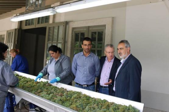 Cores Tourís na visita á adega Lagar Fornelos