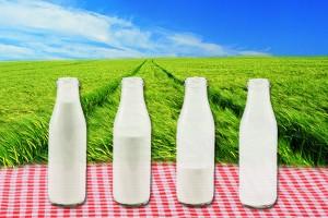 leite-si-leite-non