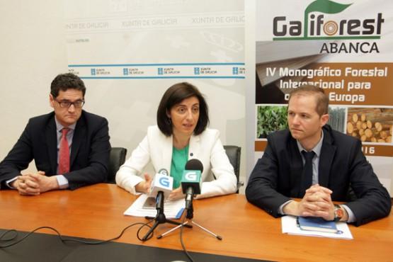 Ángeles Vázquez na presentación de Galiforest. Foto: C. Paz