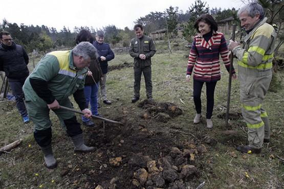 Ángeles Vázquez na visita ao monte da Braxe