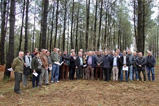 A Axencia da Industria Forestal impulsará a competitividade dun sector comprometido coa sustentabilidade