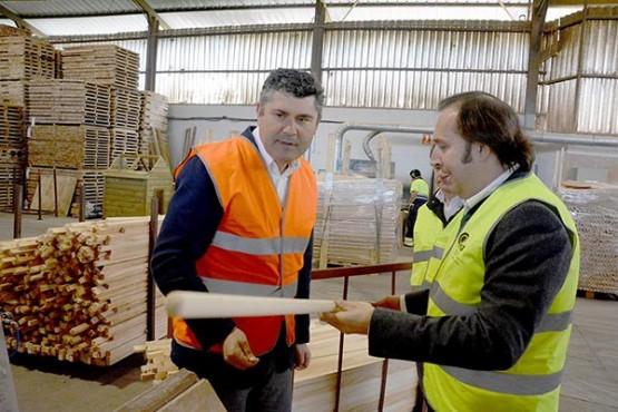 Ovidio Rodeiro na visita a unha empresa madeireira en Oza-Cesuras