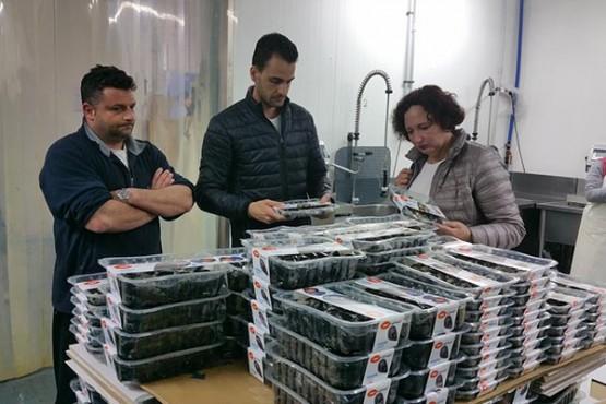 A comunidade galega incrementou no último ano un 11% as exportacións a Italia de produtos pesqueiros e da acuicultura