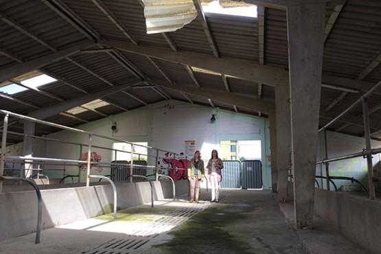Ángeles Vázquez na visita ás instalacións da Feira do Gando de Melide