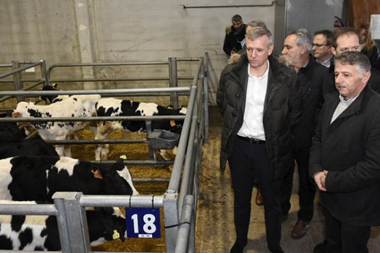 Alfonso Rueda na visita á lonxa agropecuaria da Semana Verde