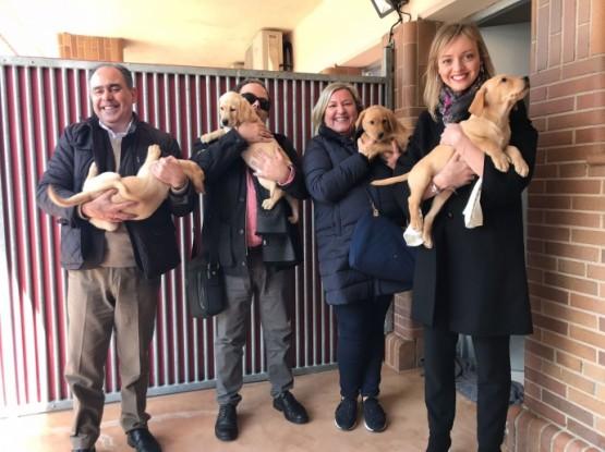 A Xunta destaca o labor da Fundación ONCE do can guía en prol da autonomía das persoas con deficiencia visual