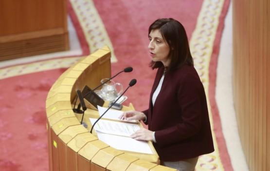 Intervención parlamentaria da conselleira