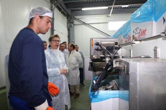 As pemes galegas de transformación de produtos do mar optan a achegas en favor da sustentabilidade ambiental