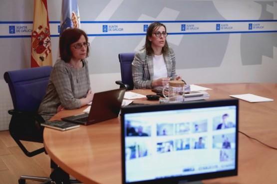A conselleira Ethel Vázquez en videoconferencia