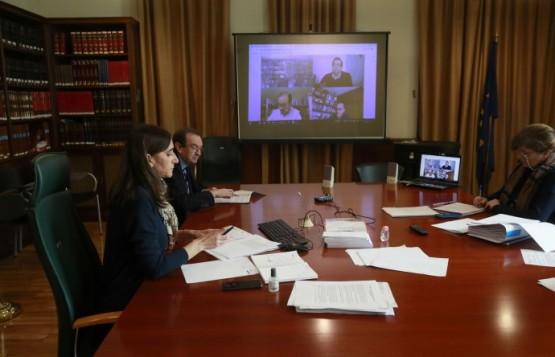 Xuntanza telemática dos representantes das entidades académicas